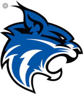 Blue Bobcats 2
